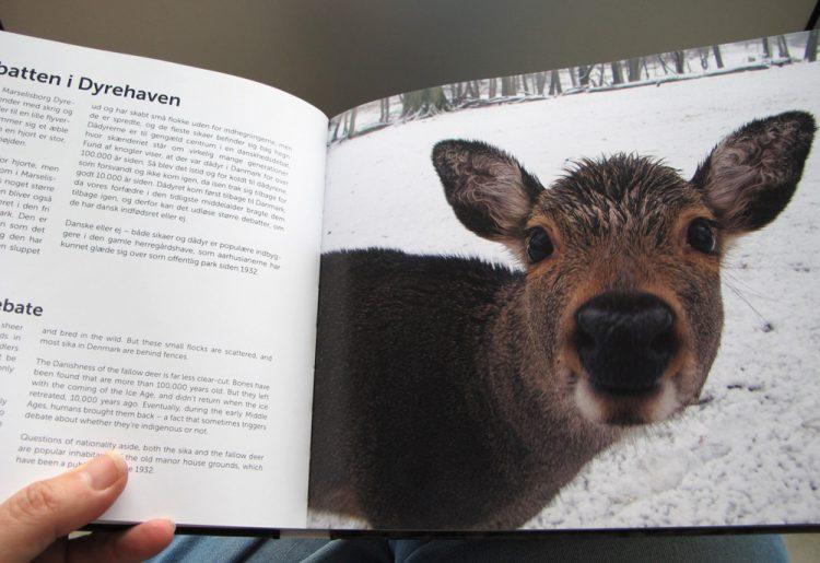 Habitat:Aarhus bogen